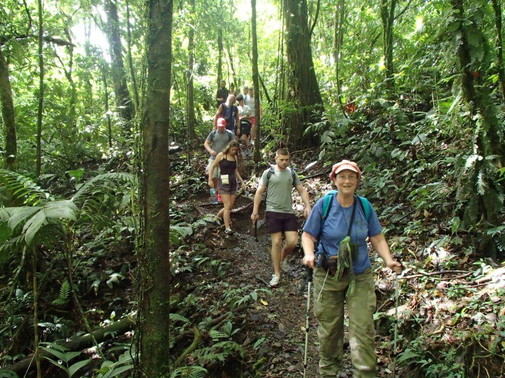 Faire du trekking dans une forêt tropicale