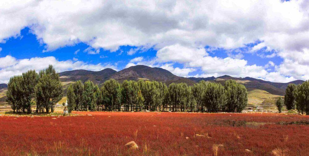 Vallée des feuilles rouges à Jiaohe