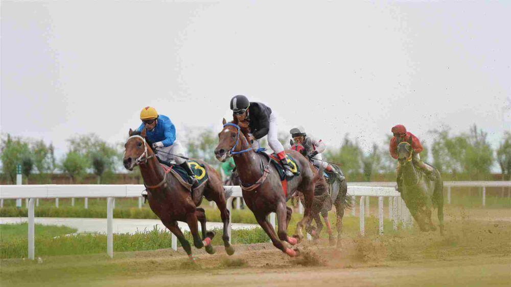 Assistez à une course de chevaux à Hong Kog
