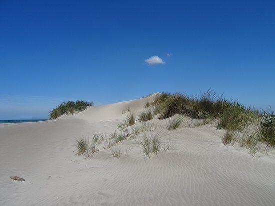 Dune de sable de plage
