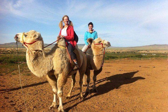 Faites une randonnée à dos de chameau dans le Gobi