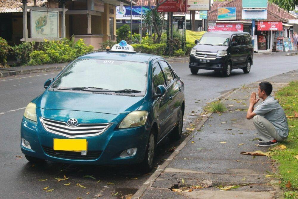 Faux taxis à oiseaux bleus