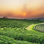Comment voyager de Chiang Mai à Chiang Rai